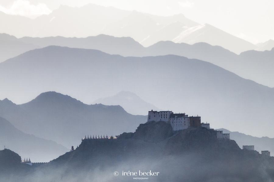 Shey Monastery. Leh, Jammu and  Kashmir,  India