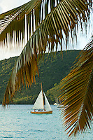 Daysailer &quot;Pepper&quot;<br />