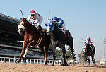 02 November 2006: Hollywood Park Race Track.Photographer: Juliann Tallino.<br />