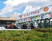 Saratoga 2013