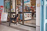 Cuba, negozio di stato, supermercato alimentare, cane davanti alla porta di ingresso<br /> Cuba, the state store, supermarket food , dog in front of the entrance door