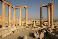 Baths of Diocletian, built 292-303 AD, view with the Great Colonnade behind, Palmyra, Syria Picture by Manuel Cohen