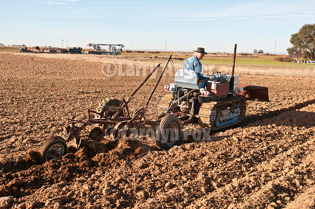 Antique tractors plowing a field in fall during the Branch 158 EDGE & TA Fall Plow Day and Plowing Seminar near Pleasant Grove, Calif...Silmer Scheidel Farm..Late 1960s Lamborghini C340 crawler tractor with 2-bottom plow