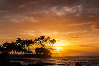 Golden sunset silhouettes palm trees and a rocky shoreline at Pauoa Bay, Big Island.