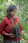 Marcia Graciela Felix Jimenez holds tree seedlings at an eco-agricultural training center in Comitancillo, Guatemala. The center is sponsored by the Maya Mam Association for Investigation and Development (AMMID).