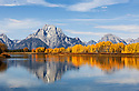 WY01839-00...WYOMING - Aspen trees and Mount Moran viewed from the Ox Bow Bend of the Snake River in Grand Teton National Park.