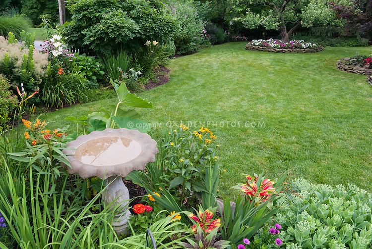 Pretty backyard with flowers | Plant & Flower Stock Photography