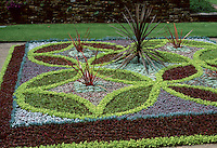Parterre of Alternathera varieties with Sempervivum arachnoides, Wisley, RHS gardens, patterns of purple foliage, green, blue, with dark Phormium
