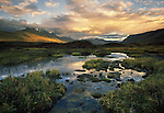 Alaska's Arctic National Wildlife Refuge