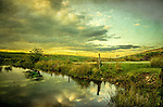 Reflections in a pond in a rural landscape in the English countryside