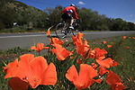 A cyclist zooms by some California poppies alongside the Silverado Trail in Napa Valley California.Mill Valley Hawks beat Drake 2-1 in a close game in Mill Valley California.
