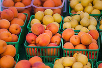 Apricots and yellow plums at a farmers market.