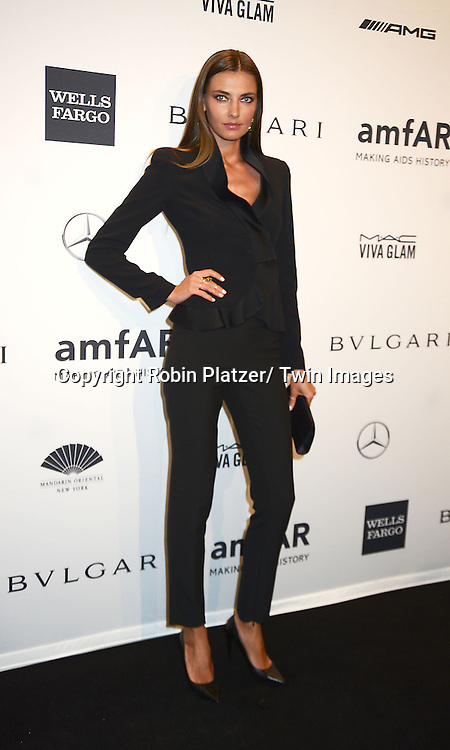Alina Baikova attends the amfAR New York Gala on February 5, 2014 at Cipriani Wall Street in New York City.