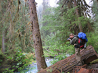 Photojournalist James Branaman photographs the Hoh River while hiking the Hoh River Trail. The Hoh River trail in Olympic National Park starts in the mossy and lush Hoh Rain Forest. From there you climb over 5,000 ft. in elevation along towering trees and rock to overlook the windswept Blue Glacier on Mt. Olympus. Tracing your steps back to the Hoh River visitors center the hike covers over 36 miles of diverse climate and ecosystems ranging from temperate rain forest to alpine.