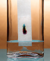 PAPER CHROMATOGRAPHY- WATER COLOR MIXTURE - 2 of 3<br />