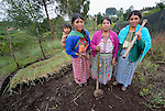 Silvia Hernandez (left), Teresa Diaz and Martina Lopez pose in a shared vegetable garden in San Luis, a small Mam-speaking Maya village in Comitancillo, Guatemala. Women in the community have worked together on several agricultural and animal raising projects with help from the Maya Mam Association for Investigation and Development (AMMID). On Hernandez' back is her 1-year old son Marcos Antonio.