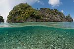Dynamited reef split level. Daram, Misool, Raja Ampat, West Papua, Indonesia,  January 2010