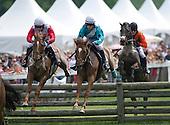 Radnor Hunt Races - 05/16/2015