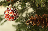 Christmas Ornament on Spruce Tree