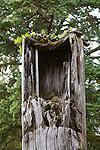 Haida Gwaii, Sgang Gwaii (Ninstints), Anthony Island, British Columbia, Canada