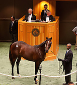 HIP 106, by Street Cry out of Dance Swiftly, $625,000.