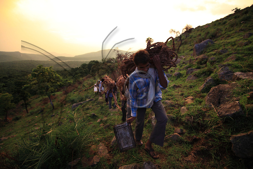The group of honey hunters carry the 70kg, 65 meters long rope ladder to the foot of Deva Verea cliff.