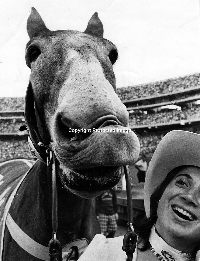 Charlie O, Oakland A's mascot makes a face for photo before Athletics game in Oakland. &quot;Charlie O&quot;, named by and for owner Charles O. Finley owner of the Oakland Cllub. handler Alexis Paris holding the mule.<br />