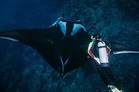 QT2001-D. Manta Ray (Manta birostris) and scuba diver (model released). Baja, Mexico, Pacific Ocean.<br /> Photo Copyright &copy; Brandon Cole. All rights reserved worldwide.  www.brandoncole.com
