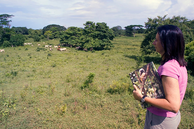Founder of Proyecto Titi,  Anne Savage, stands in what was once dry tropical forest--habitat for Cotton-top tamarins. Now it's a pasture for cattle. Anne is holding a picture of a tamarin-symbolic of the only way to see the tamarin in the future if Colombian forests are left unprotected.