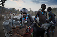 "Bull Jumping outside of  Dimeca. Hamar tribe Bull Jumping Ceremony.  The kid in many of the photographs is Gaito Loka and and he was the bull jumper I photographed a week ago...  his coming of age ceremony for the Hamar and Bene tribes.  Now Gaito is a Maze he participates in the whipping of the women and the managing of the ceremony.  Mazes are single men and they are paid for running this ceremony.  The bull jumping family in this case wanted to give them one goat and a small jug of honey.  They held out for three goats and a large jug of honey.  When they marry they will get a dowry and maybe land but for now they have to survive on payments for bull jumping ceremonies.  Maze will only eat milk, honey and meat.  Once they marry their diet can change.  There were some Benne Maze that wanted to participate, but they ate bananas and so they were excluded... Hamar did not want Benne in the ceremony... but the elders called the Maze aside to discuss it... this was the first time in Gaito's life that he was a participant in decision making in his village... in his tribe...Woman that are related to the boy get whipped in support of him.  The idea is that at some point if they need help they can go to him and say ""look... I was there to support you at your bull jumping, SEE THE SCARS... now I need your help.""..Bull jumpings also have a lot of dancing and activity so they have become local tourist attractions... even this one that is so remote. ..Contacts:.Steve Turner... steveturner@originsafari.info.+ 254 722 707521..Lale Biwa.lalebiwa@yahoo.com"