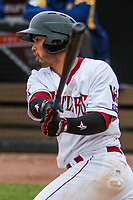 2017.04.11 Burlington Bees (Angels) @ Wisconsin Timber Rattlers (Brewers) Game Two