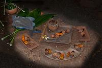 Examples of food, including hala keys, on a lauhala mat table at a recreated Hawaiian hut used as a men's eating house, Kamokila Hawaiian Village, Wailua River Valley, Kauai.
