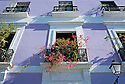 Colorful facade of apartment houses with iron railings and Bougainvillea on Calle de Tetuán in Old San Juan, Puerto Rico..