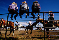 """Boasting the """"Smallest Fair in America,"""" nineteen people who live in Amidon, North Dakota, all join together to organize and put on the fair. The Slope County Fair Rodeo offers $1000 in purses for the cowboys and cowgirls who triumph in its saddle bronco, steer wrestling, goat tying, bull riding, calf roping, and other competitions. Fairs thrive across the country blending community traditions with entertainment spectacles."""