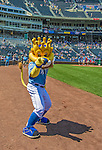 25 August 2013: The Kansas City Royals mascot Sluggerrr the Lion entertains the fans prior to a game against the Washington Nationals at Kauffman Stadium in Kansas City, MO. The Royals defeated the Nationals 6-4, to take the final game of their 3-game inter-league series. Mandatory Credit: Ed Wolfstein Photo *** RAW (NEF) Image File Available ***