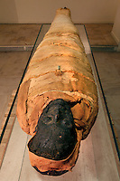 "GEORGES LABIT MUSEUM, TOULOUSE, FRANCE - MARCH 03 - EXCLUSIVE : A general view from behind of the Egyptian mummy on March 3, 2009 in the Georges Labit Museum, Toulouse, France. The Egyptian mummy arrived in Toulouse in 1849, encased in a sarcophagus labelled ""In-Imen"" from the 7th or 8th century BC. It is preserved at the Labit Museum since 1949. The mummy is now the subject of a very rare tissue sampling operation to determine its datation.  (Photo by Manuel Cohen)"