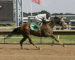 Parx Racing Win Photos 10-2013