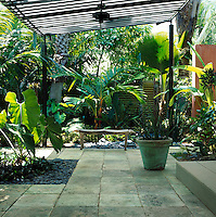 View of courtyard with  striped awning, natural limestone coral paving covers the ground surrounded by tropical planting beds covered in pebbles