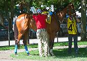 1st Michael Walsh Novice Stakes - Schoodic