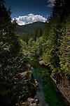 Creek between Port Renfrew and Cowichan lake.Vancouver Island, British Columbia, Canada.