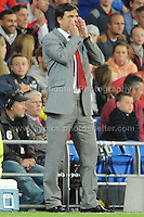 Wales manager Chris Coleman passing on some advise to his players during the Wales v Serbia FIFA World Cup 2014 Qualifier match at Cardiff City Stadium, Cardiff, Wales -Tuesday 10th Sept 2014. All images are the copyright of Jeff Thomas Photography-07837 386244-www.jaypics.photoshelter.com