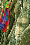 This stone head of Buddha has become entrapped in the roots of a Banyan tree, creating one of the most unusual sights in Ayutthaya as the roots continue to grow.... Wat Mahathat was the residence of the Supreme Patriarch or leader of the Thai Buddhist monks.