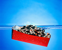BUOYANCY: BOAT FILLED WITH BEANS (5 of 5)<br />