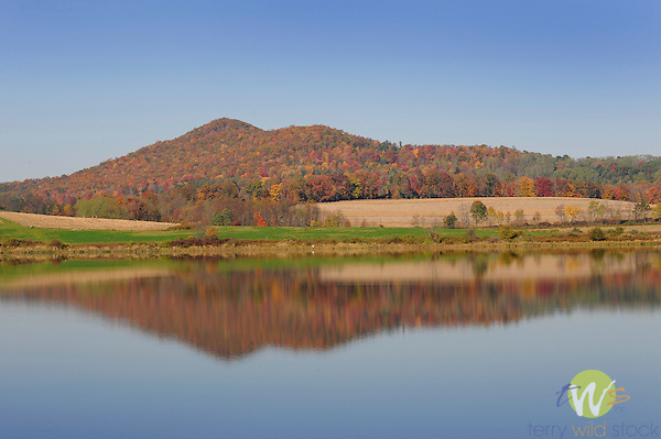 Rose valley lake pa in autumn with reflection terry for Pa fish and game