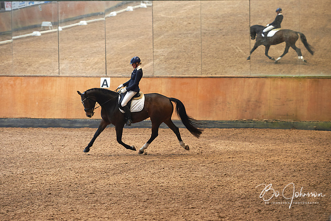 Helen Johansson riding Katrinelunds De Chin in dressage Latt B:2 at Lillhagens Ridklubb in southern Sweden. <br /> The couple was placed 3rd in the competition with 67,333%.<br /> Katrinelunds De Chin is a mare, height 167 cm, born 2008, e De Noir - Chevalier, breeder Ib Kirk (Katrinelund stud in Denmark), owners Helen Johansson and Ann Winckler.<br /> October 2015.<br /> Only for editorial use.