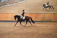 Helen Johansson riding Katrinelunds De Chin in dressage Latt B:2 at Lillhagens Ridklubb in southern Sweden. <br />