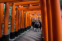 red gates called Torii in Fushimi Inari Taisha temple complex near Kyoto, Japan