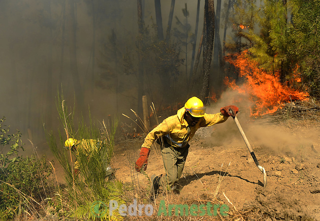 "SPAIN, Parras : A member of the fire brigade ""Romeo 10"" of Segovia works around a fire in Parras, near Avila during the forest fires in the region, on July 29, 2009. A man died in a wildfire on July 28, when flames swept through a house in western Spain, the first civilian death in blazes that also claimed the lives of six Spanish firefighters last week, authorities said.  on July 29, 2009. (C) Pedro ARMESTRE"