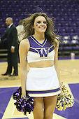 March 6, 2013:  Washington cheerleader Jessica Saunders entertained fans during a time out against USC.  Washington defeated USC 65-57 at Alaska Airlines Arena Seattle, Washington...