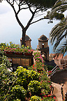 Villa Rufolo Italian gardens, Ravello. Amalf Coast, Italy
